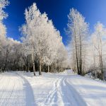 Nordic Skiing Anchorage's Trail System