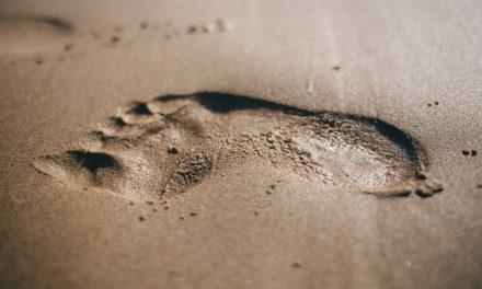 4 Little Ways to Lessen Your Travel Footprint