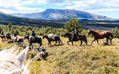 Agritourism in Patagonia: Sustainable Tourism to Preserve Culture and Identity