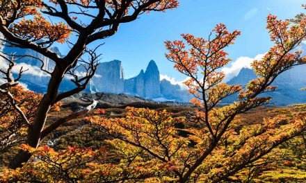 5 Reasons to Visit Torres Del Paine in the Fall